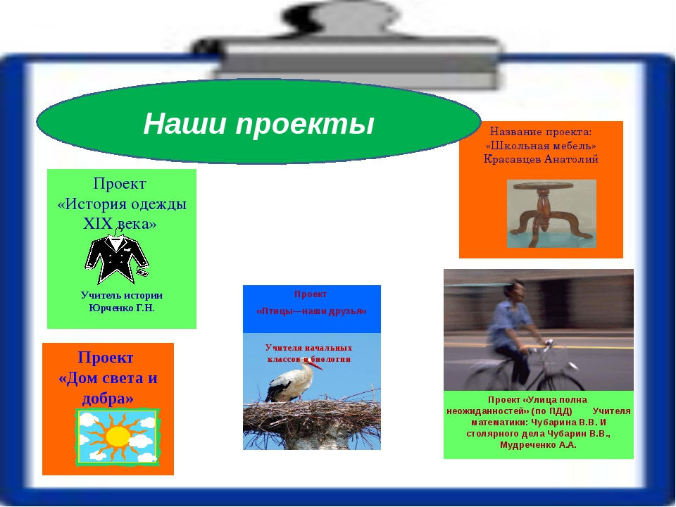 Проект «История одежды XIX века» Проект «Птицы—наши друзья» Название проекта...