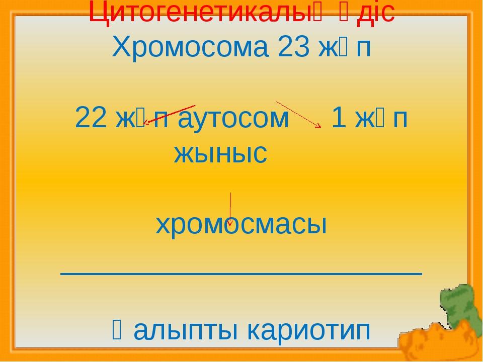 Цитогенетикалық әдіс Хромосома 23 жұп 22 жұп аутосом 1 жұп жыныс хромосмасы...