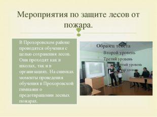 Мероприятия по защите лесов от пожара. В Прохоровском районе проводятся обуче