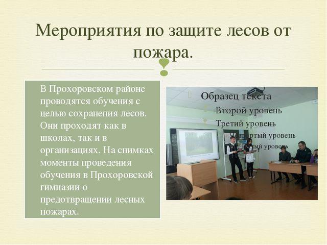 Мероприятия по защите лесов от пожара. В Прохоровском районе проводятся обуче...