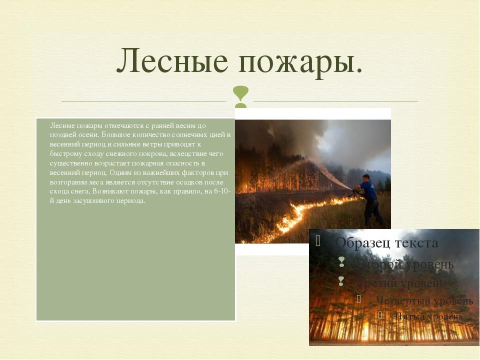 Лесные пожары. Лесные пожары отмечаются с ранней весны до поздней осени. Боль...