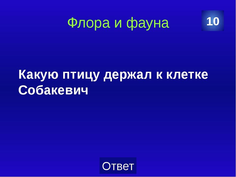 Флора и фауна Какими цветами торговала Лиза, героиня повести Карамзина? 20 От...