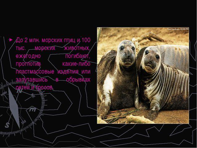 До 2 млн. морских птиц и 100 тыс. морских животных, ежегодно погибают, прогло...