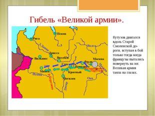 Кутузов двигался вдоль Старой Смоленской до- роги, вступая в бой только тогда