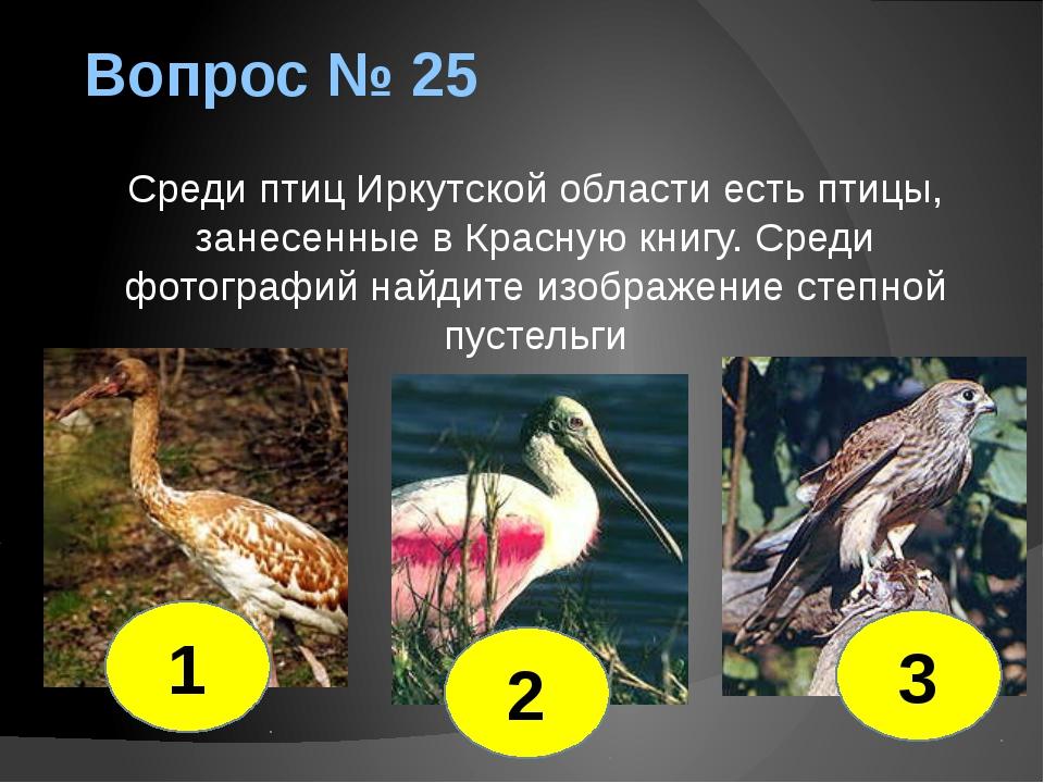 Вопрос № 25 Среди птиц Иркутской области есть птицы, занесенные в Красную кни...