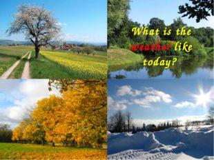 Aims познакомиться со словами по теме «Погода»; научиться описывать погоду