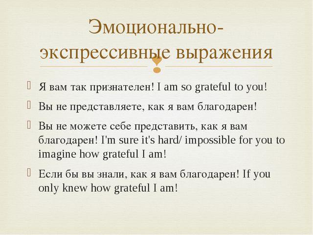 Я вам так признателен! I am so grateful to you! Вы не представляете, как я ва...