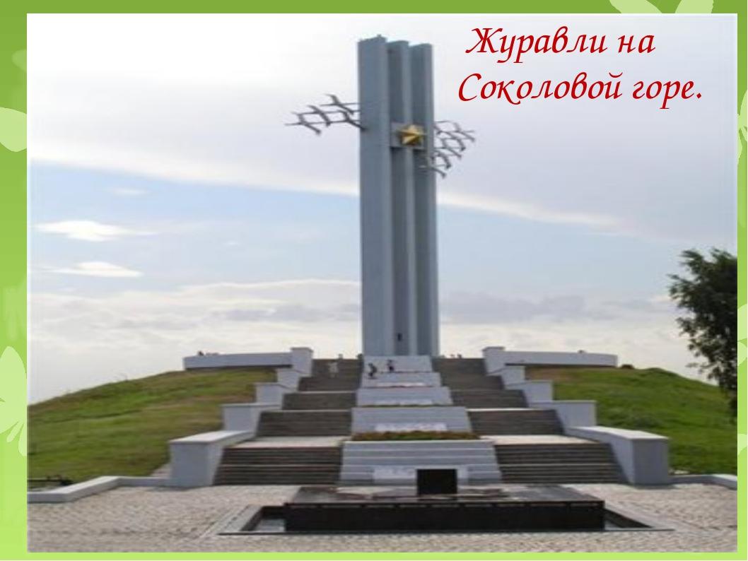 Журавли на Соколовой горе.
