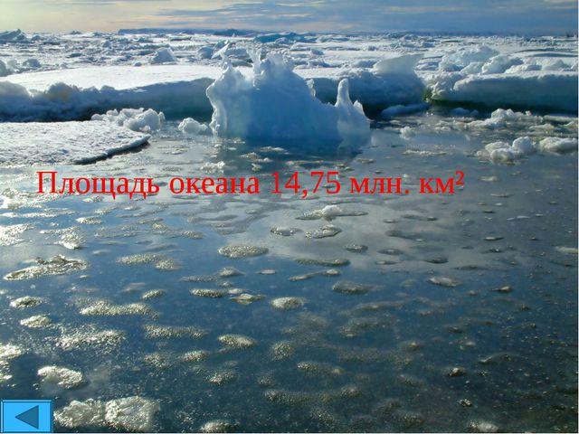 Площадь океана 14,75 млн. км²