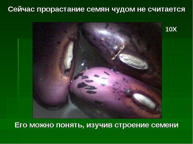 Сейчас прорастание семян чудом не считается 10Х Его можно понять, изучив стро...
