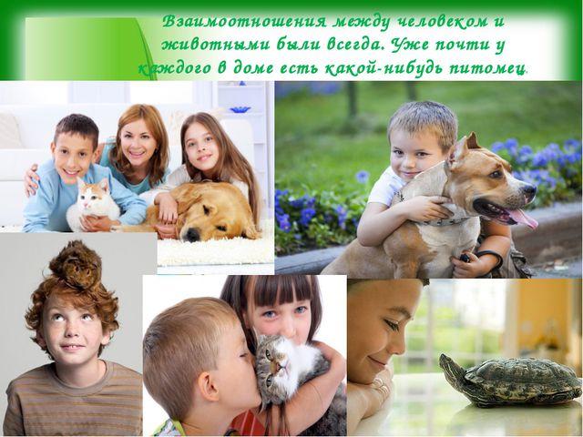 Взаимоотношения между человеком и животными были всегда. Уже почти у каждого...