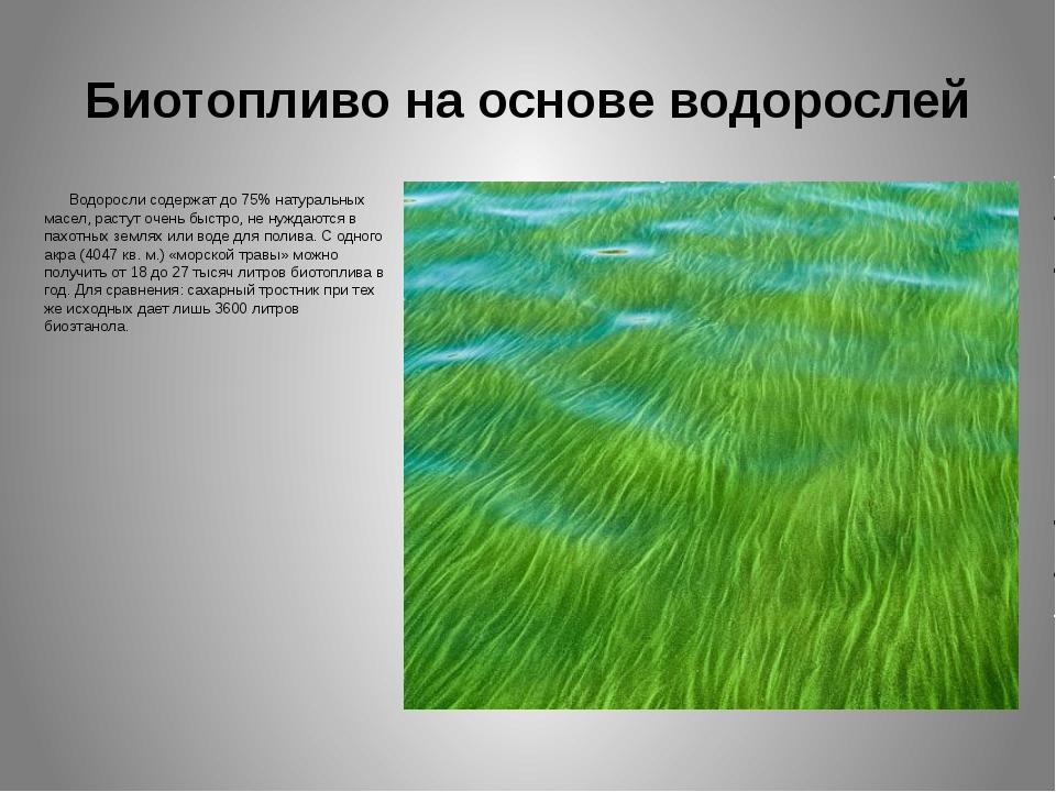 Биотопливо на основе водорослей Водоросли содержат до 75% натуральных масел,...