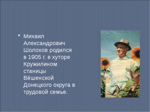 Михаил Александрович Шолохов родился в 1905 г. в хуторе Кружилином станицы Вё