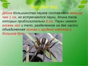 Внешний вид Длина большинства пауков составляет меньше чем 1 см, но встречают