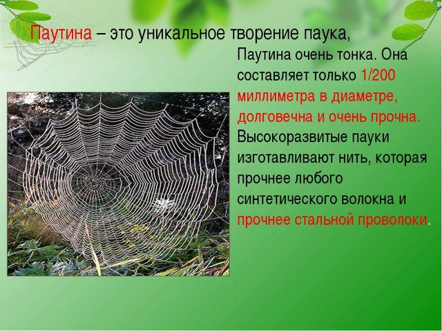 Паутина – это уникальное творение паука, Паутина очень тонка. Она составляет...
