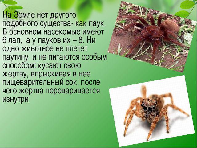 На Земле нет другого подобного существа- как паук. В основном насекомые имею...