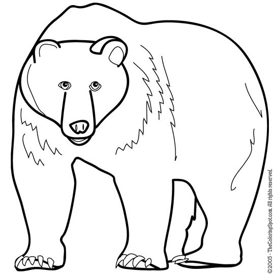 http://thecoloringspot.com/wp-content/uploads/2011/05/bear.jpg