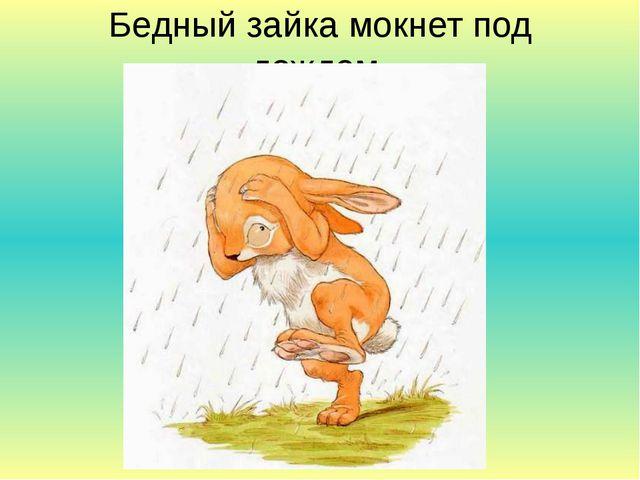 Бедный зайка мокнет под дождем.