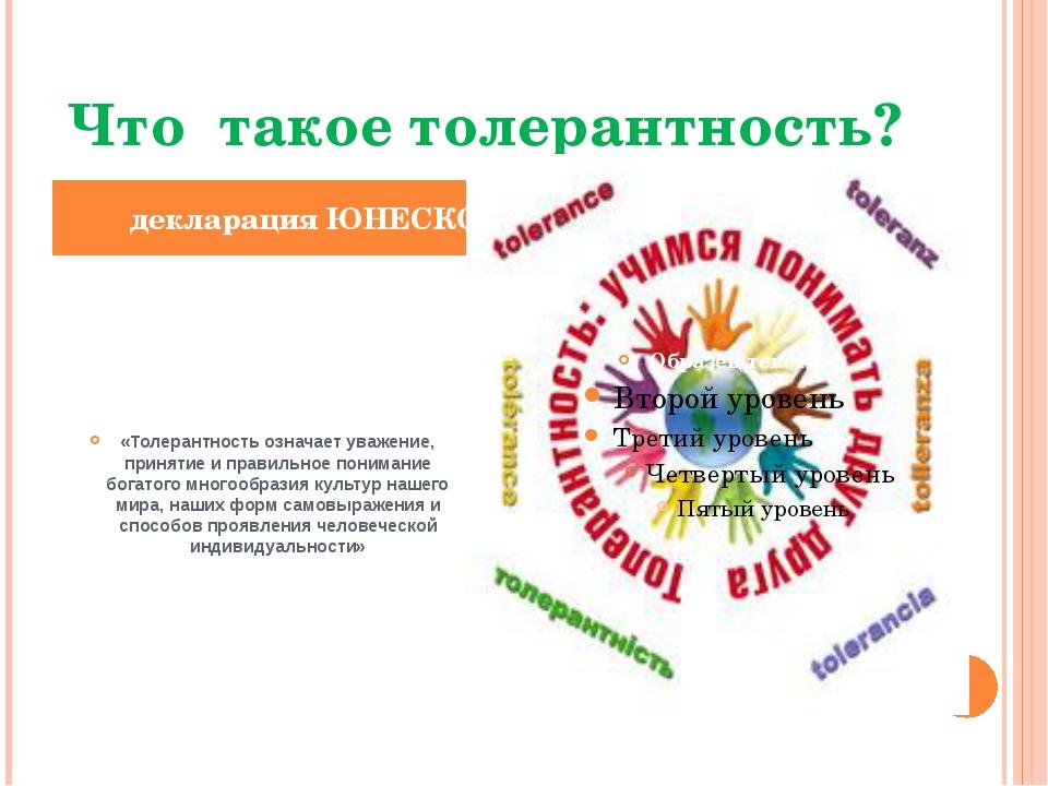 Что такое толерантность? «Толерантность означает уважение, принятие и правил...