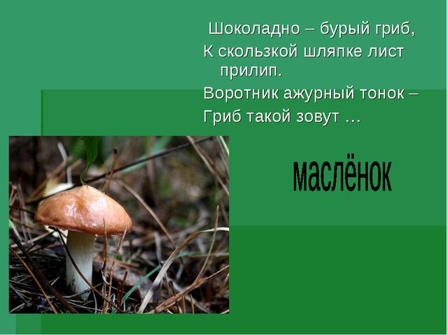 Шоколадно – бурый гриб, К скользкой шляпке лист прилип. Воротник ажурный тон...