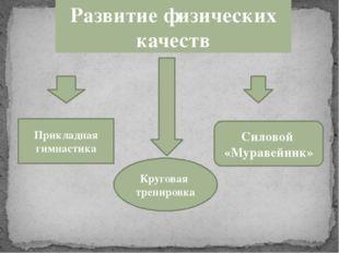 Развитие физических качеств Круговая тренировка Силовой «Муравейник» Прикладн