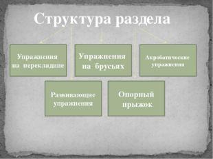 Структура раздела Упражнения на перекладине Упражнения на брусьях Развивающие