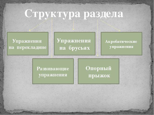 Структура раздела Упражнения на перекладине Упражнения на брусьях Развивающие...