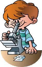 Картинки по запросу микроскоп