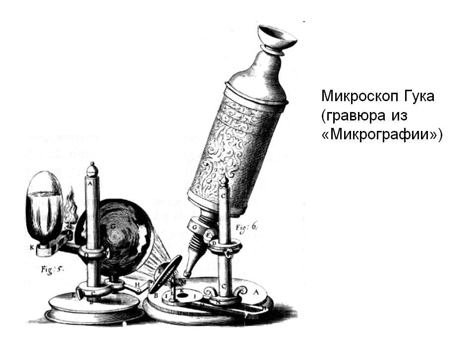 http://900igr.net/datas/fizika/Guk/0006-006-Mikroskop-Guka-gravjura-iz-Mikrografii.jpg