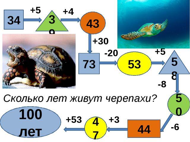 34 39 43 73 53 58 50 47 44 100 лет +5 -6 -8 +4 +30 -20 +5 +3 +53 Сколько лет...