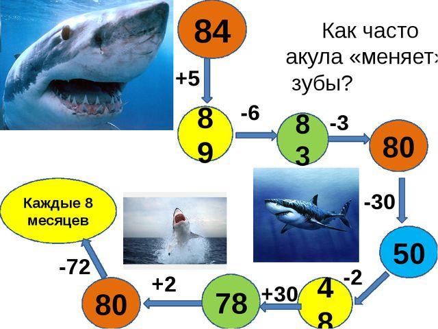 80 Каждые 8 месяцев 78 48 +5 -6 +2 -72 -30 -2 -3 +30 80 89 83 84 50 Как част...