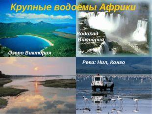 Реки: Нил, Конго Водопад Виктория Озеро Виктория Крупные водоёмы Африки