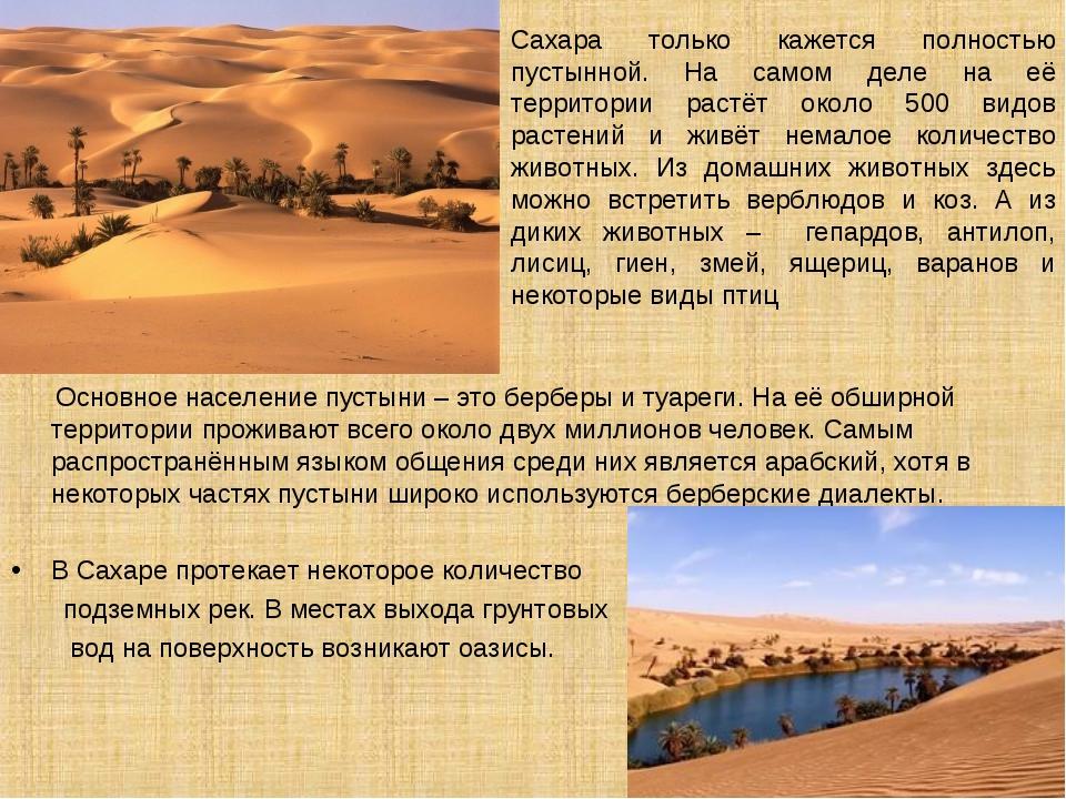 Сахара только кажется полностью пустынной. На самом деле на её территории рас...