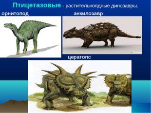 Птицетазовые - растительноядные динозавры. орнитопод анкилозавр цератопс