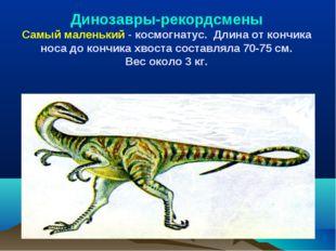 Динозавры-рекордсмены Самый маленький - космогнатус. Длина от кончика носа до