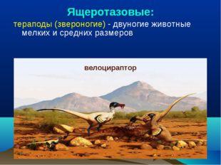 Ящеротазовые: тераподы (звероногие) - двуногие животные мелких и средних разм