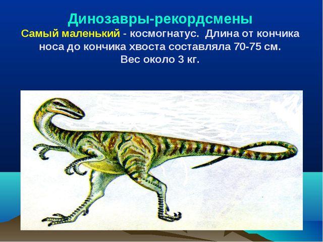 Динозавры-рекордсмены Самый маленький - космогнатус. Длина от кончика носа до...