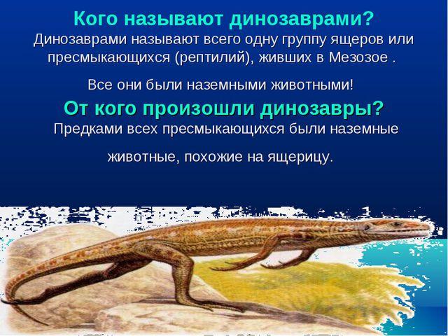 Кого называют динозаврами? Динозаврами называют всего одну группу ящеров или...
