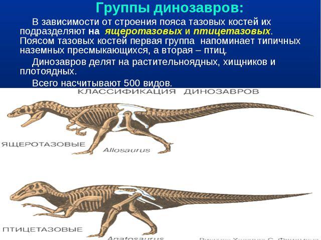 Группы динозавров: В зависимости от строения пояса тазовых костей их подразд...
