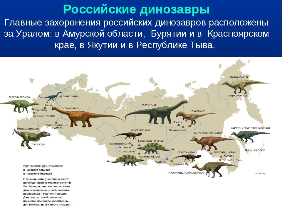Российские динозавры Главные захоронения российских динозавров расположены за...