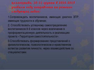 Деятельность педагогического коллектива, 10-11 группы в 2014-2015 учебном год