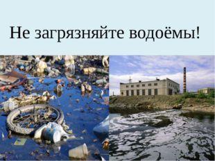Не загрязняйте водоёмы!