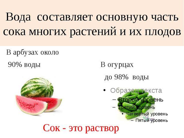 Вода составляет основную часть сока многих растений и их плодов В арбузах око...
