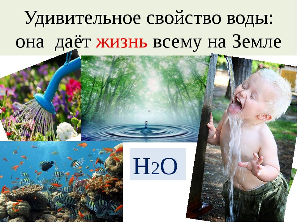 Удивительное свойство воды: она даёт жизнь всему на Земле H2O