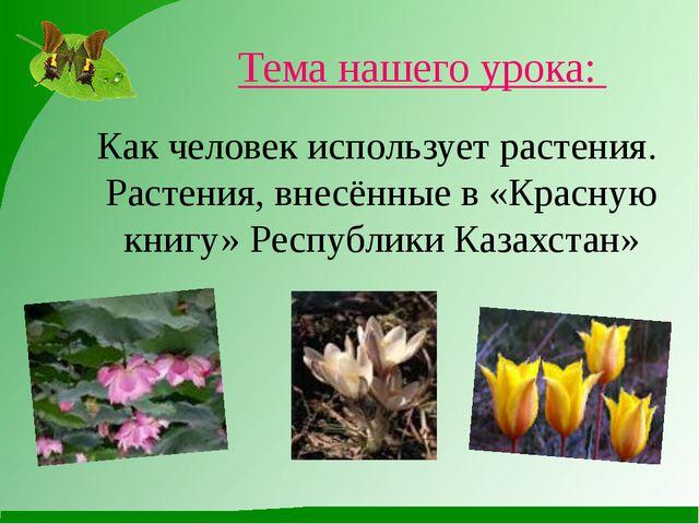 Как человек использует растения. Растения, внесённые в «Красную книгу» Респуб...
