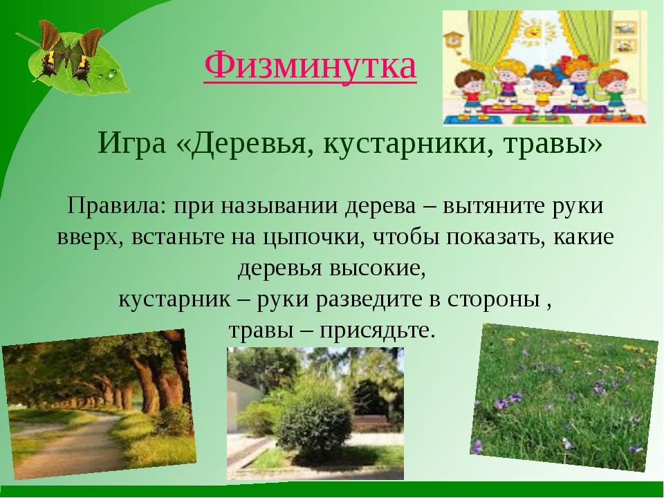 Физминутка Игра «Деревья, кустарники, травы» Правила: при назывании дерева –...