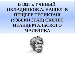 В 1938 г. УЧЕНЫЙ ОКЛАДНИКОВ А. НАШЕЛ В ПЕЩЕРЕ ТЕСИКТАШ (УЗБЕКИСТАН) СКЕЛЕТ НЕ