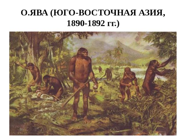 О.ЯВА (ЮГО-ВОСТОЧНАЯ АЗИЯ, 1890-1892 гг.)