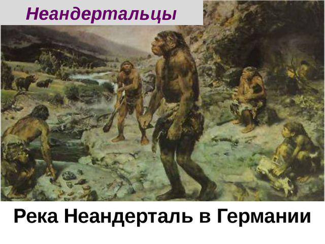 Река Неандерталь в Германии Неандертальцы
