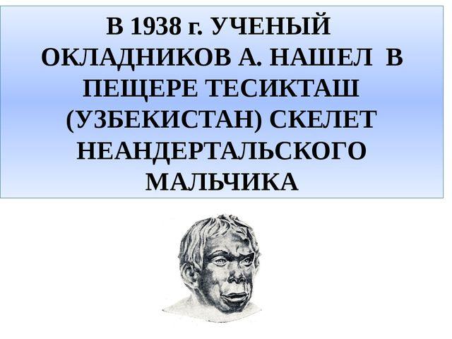 В 1938 г. УЧЕНЫЙ ОКЛАДНИКОВ А. НАШЕЛ В ПЕЩЕРЕ ТЕСИКТАШ (УЗБЕКИСТАН) СКЕЛЕТ НЕ...